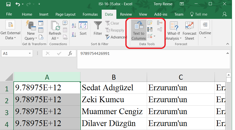 Correct ISBNs converted to scientific notation in Excel